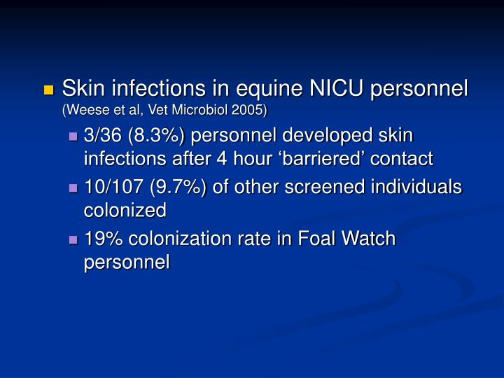 Skin infections in equine NICU personnel
