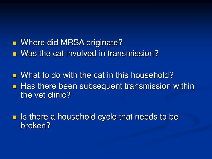 Where did MRSA originate?