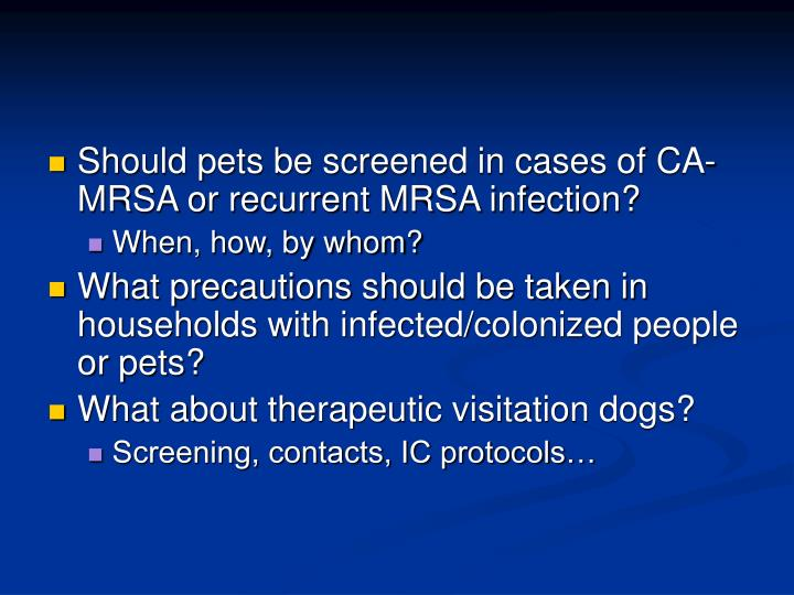 Should pets be screened in cases of CA-MRSA or recurrent MRSA infection?