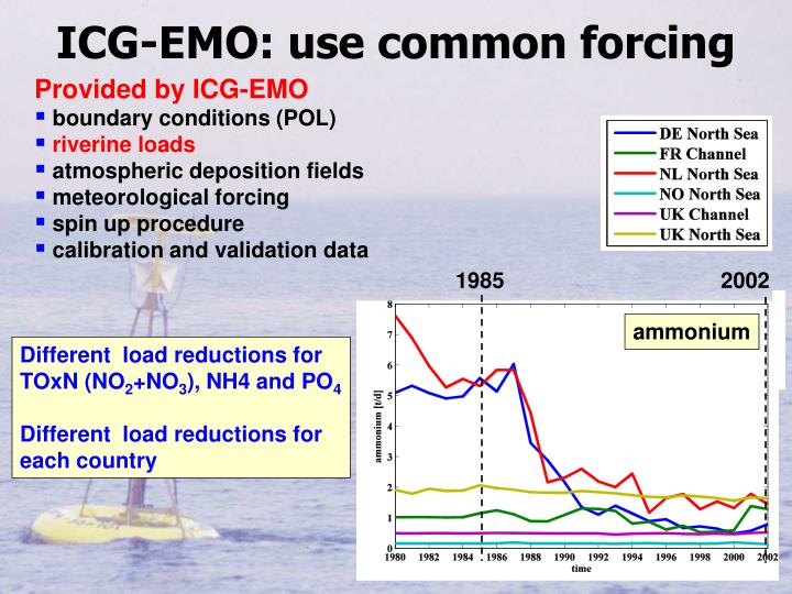 ICG-EMO: use common forcing