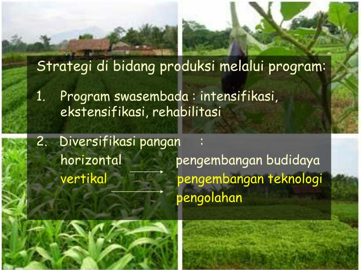 Strategi di bidang produksi melalui program: