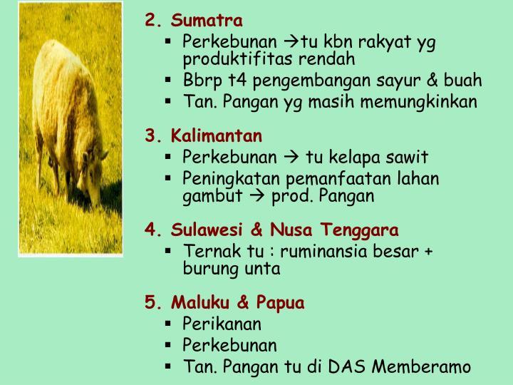 2. Sumatra