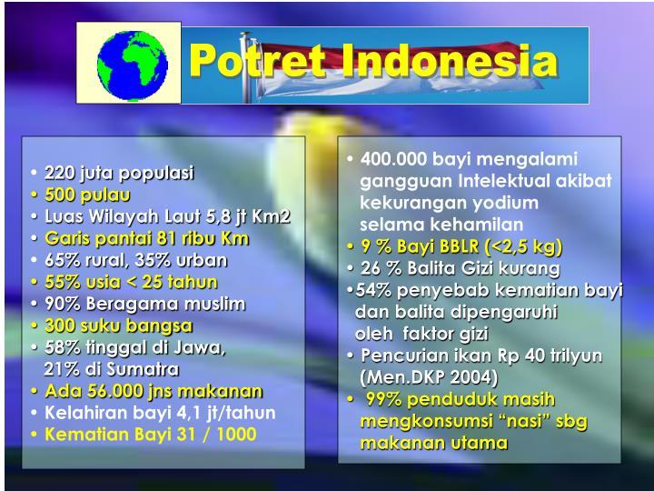 Potret Indonesia