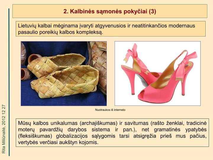 2. Kalbinės sąmonės pokyčiai (3)