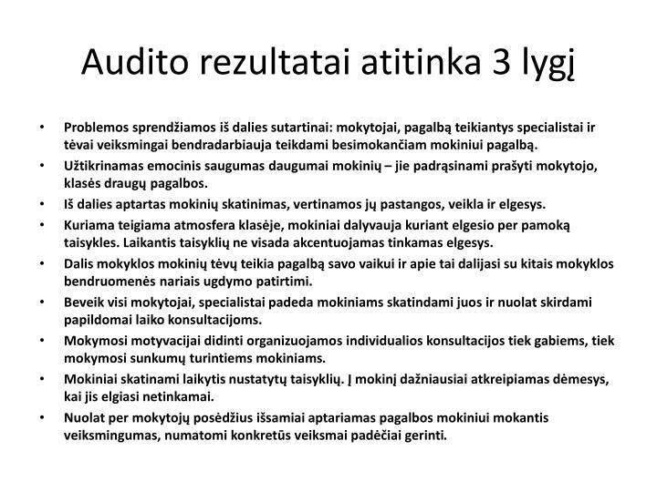 Audito rezultatai atitinka 3 lygį