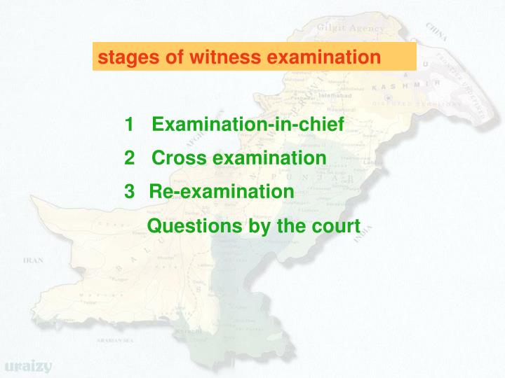 stages of witness examination