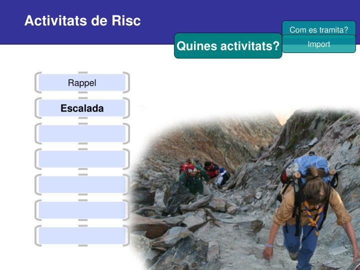 Activitats de Risc
