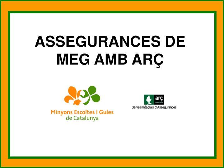 ASSEGURANCES DE MEG AMB ARÇ