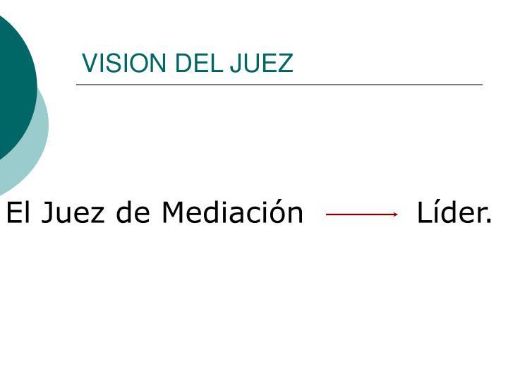 VISION DEL JUEZ