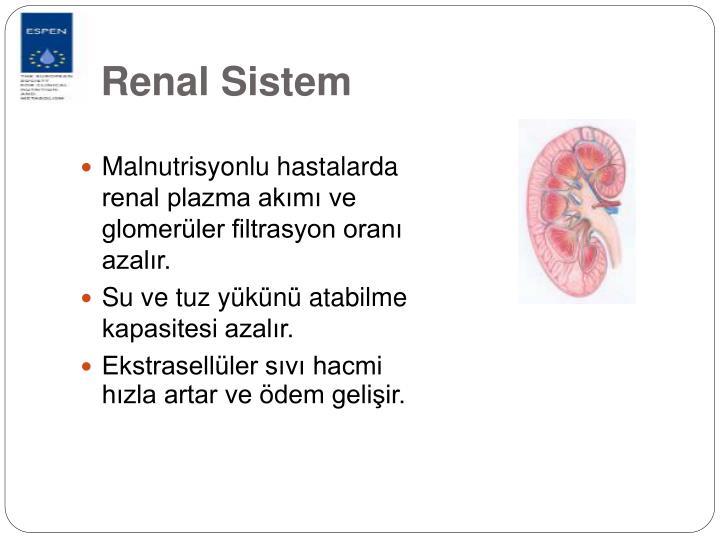 Renal Sistem