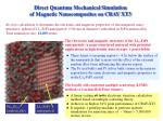 direct quantum mechanical simulation of magnetic nanocomposites on cray xt3