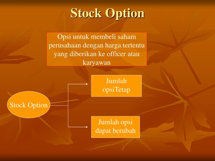 Stock Option