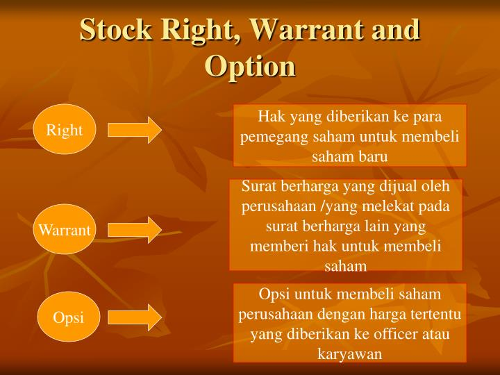Stock Right, Warrant and Option