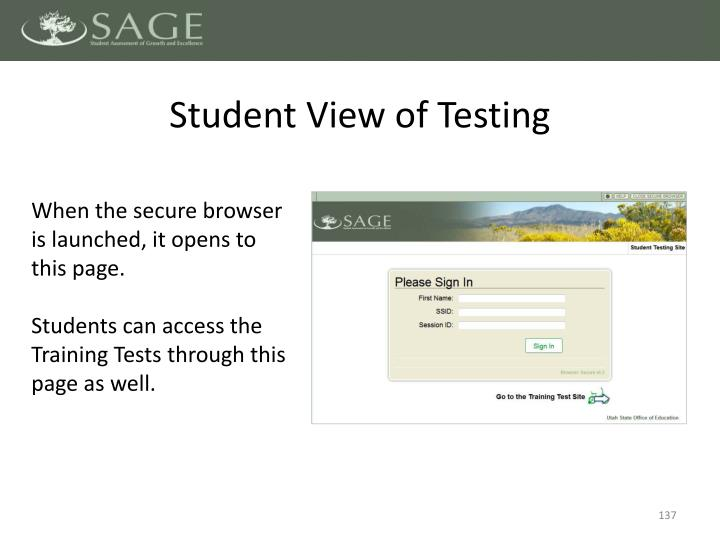 Student View of Testing