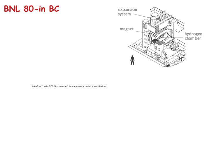 BNL 80-in BC