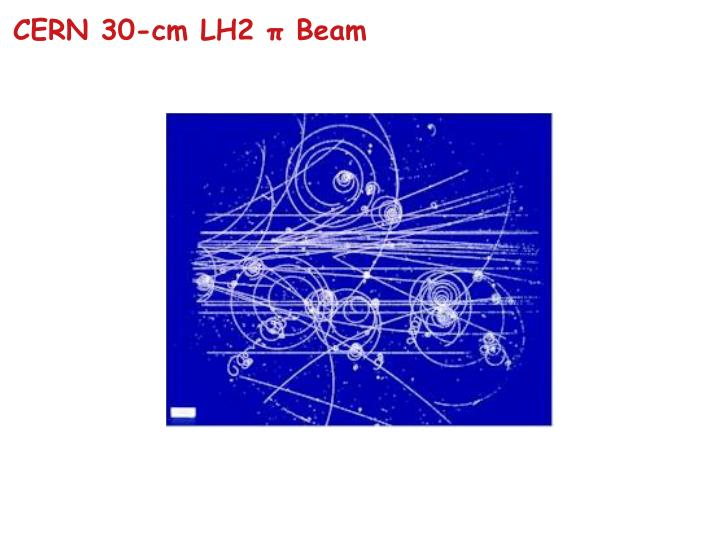 CERN 30-cm LH2 π Beam