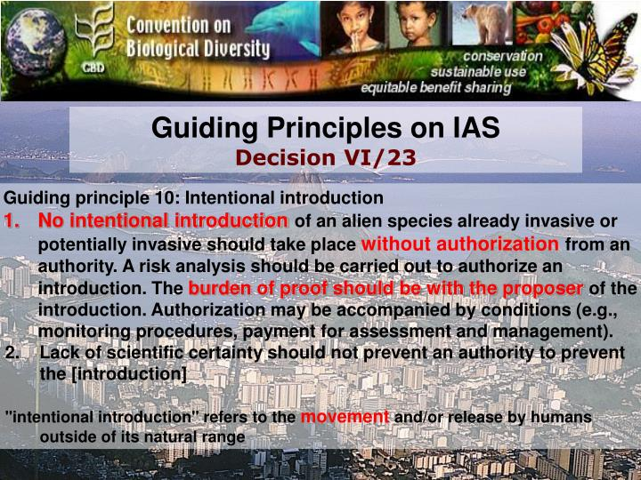 Guiding Principles on IAS