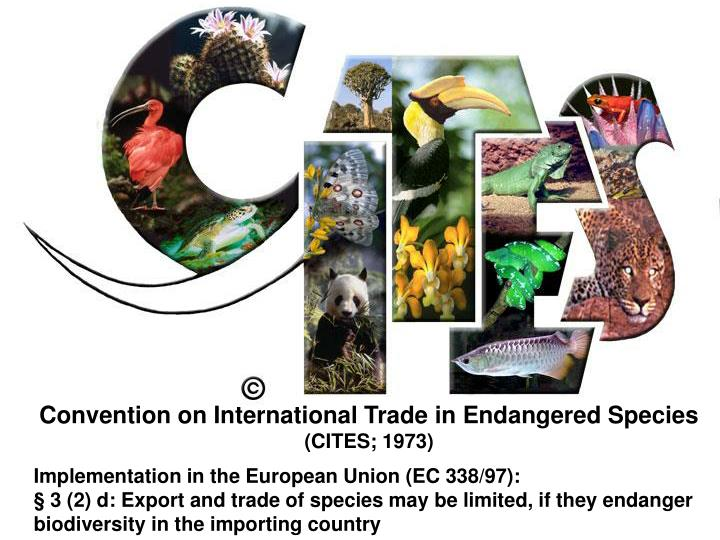 Convention on International Trade in Endangered Species