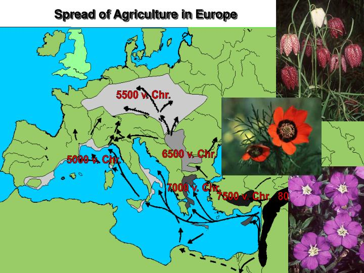 Spread of Agriculture in Europe