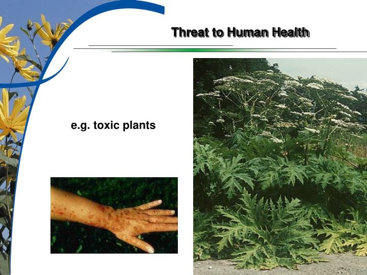 Threat to Human Health