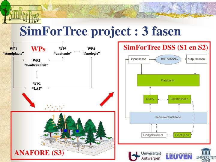 SimForTree project : 3 fasen