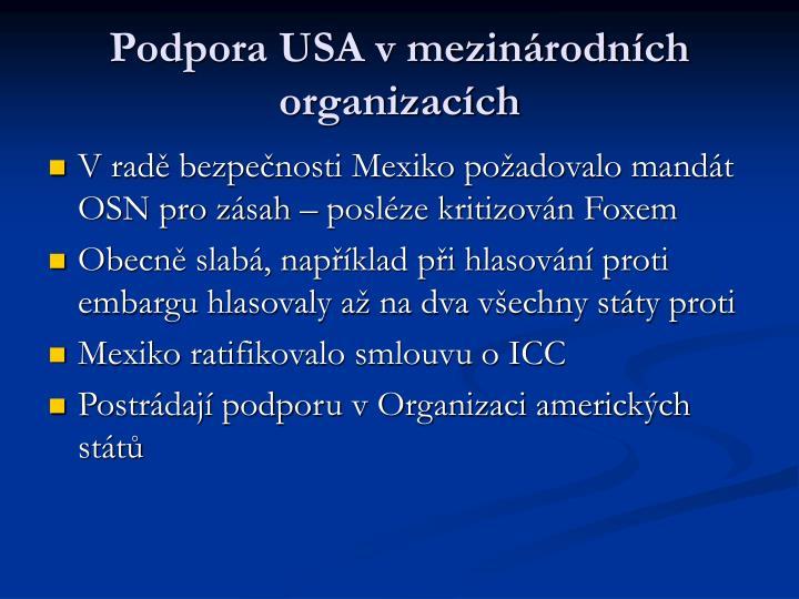 Podpora USA v mezinárodních organizacích