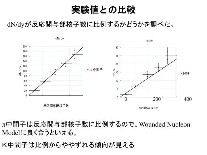 実験値との比較