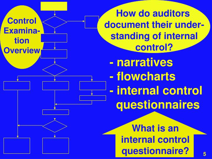 How do auditors