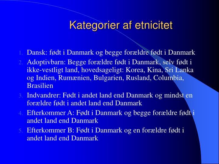 Kategorier af etnicitet
