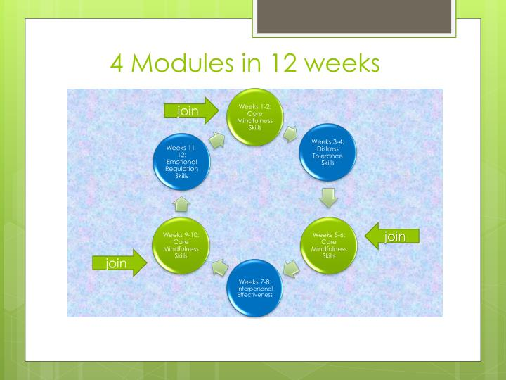 4 Modules in 12 weeks