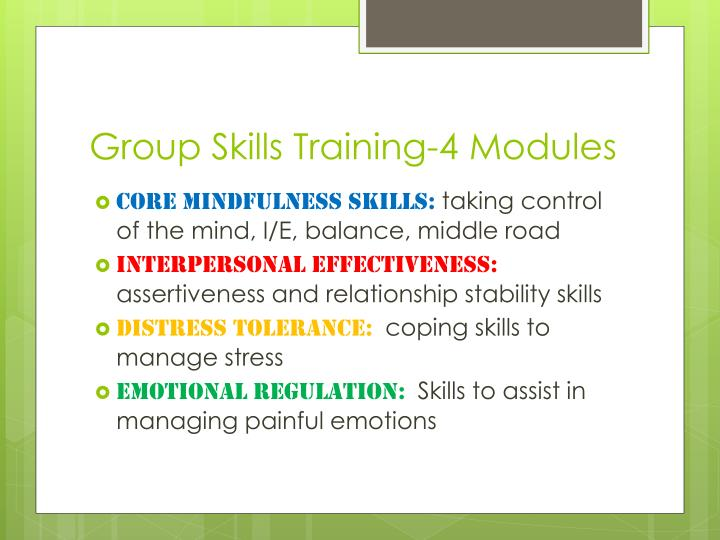Group Skills Training-4 Modules