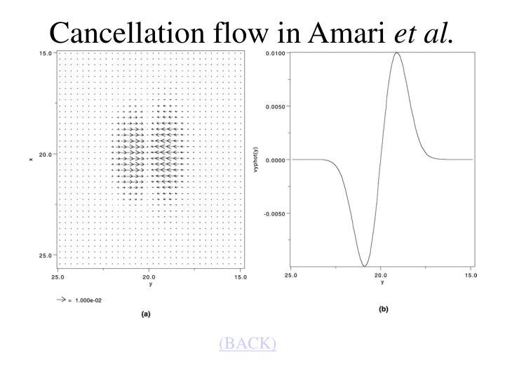 Cancellation flow in Amari