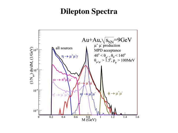 Dilepton