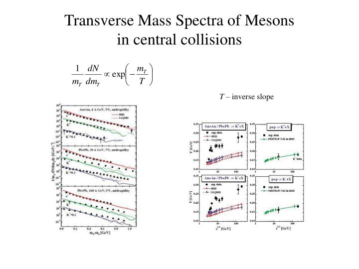 Transverse Mass Spectra of Mesons