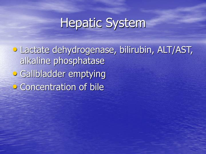 Hepatic System