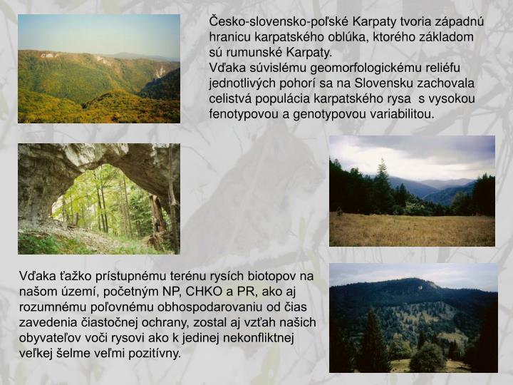 Česko-slovensko-poľské Karpaty tvoria západnú hranicu karpatského oblúka, ktorého základom sú rumunské Karpaty.                                 Vďaka súvislému geomorfologickému reliéfu jednotlivých pohorí sa na Slovensku zachovala celistvá populácia karpatského rysa  s vysokou fenotypovou a genotypovou variabilitou.