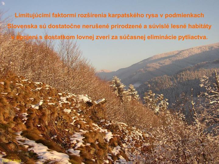 Limitujúcimi faktormi rozšírenia karpatského rysa v podmienkach Slovenska sú dostatočne nerušené prirodzené a súvislé lesné habitáty v spojení s dostatkom lovnej zveri za súčasnej eliminácie pytliactva.
