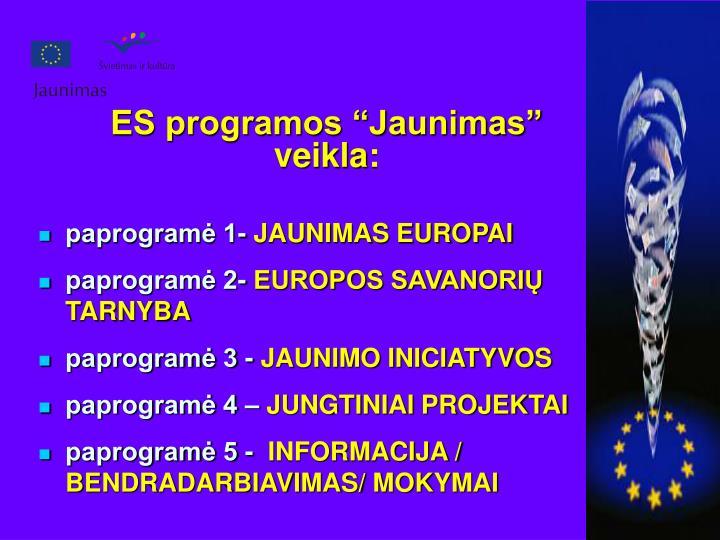 """ES programos """"Jaunimas"""" veikla:"""