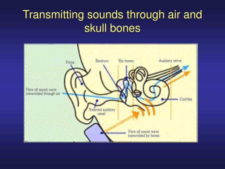 Transmitting sounds through air and skull bones