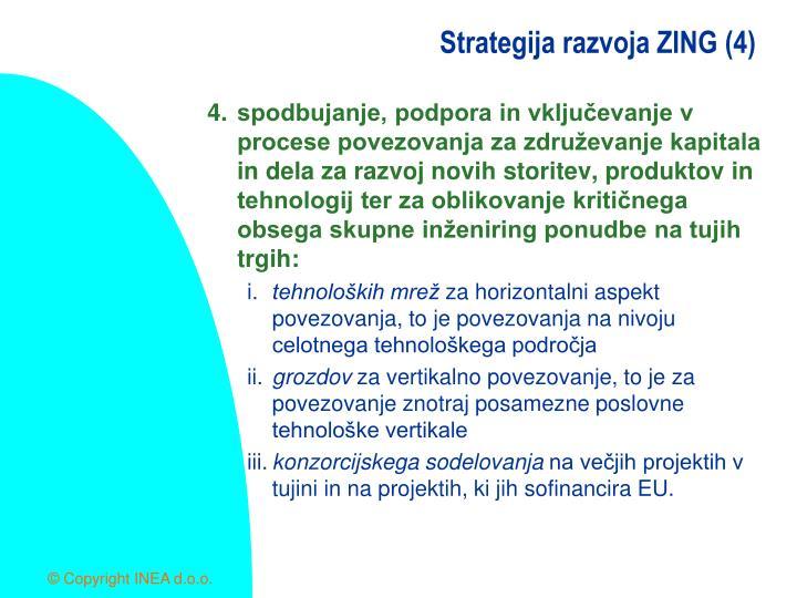 Strategija razvoja ZING (4)