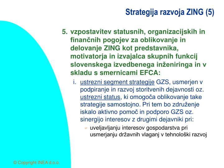 Strategija razvoja ZING (5)