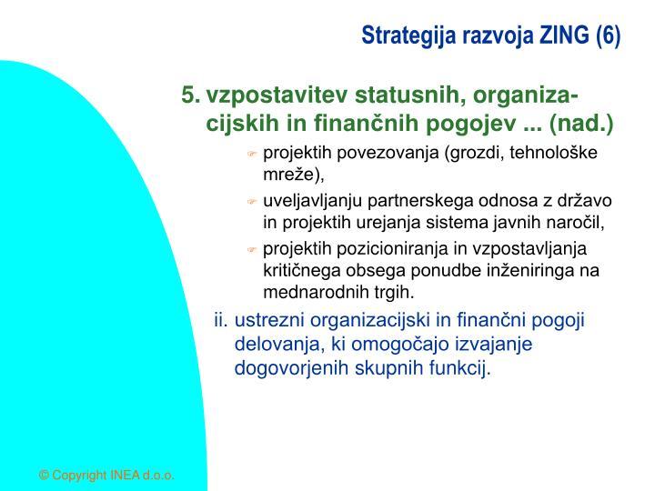 Strategija razvoja ZING (6)