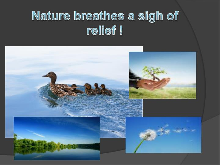 Nature breathes a sigh of relief !