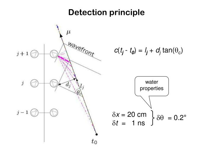 Detection principle