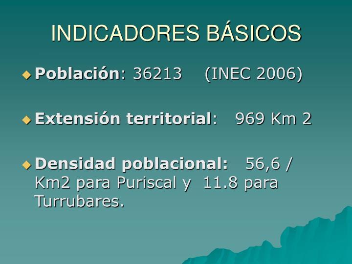 INDICADORES BÁSICOS