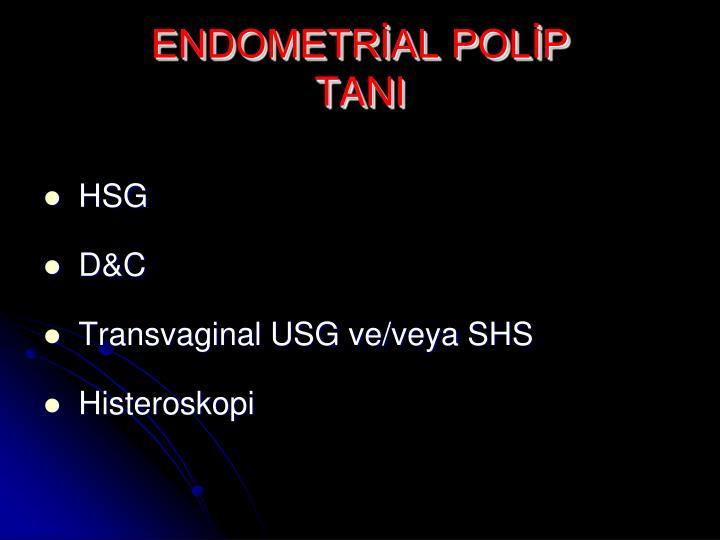 ENDOMETRİAL POLİP