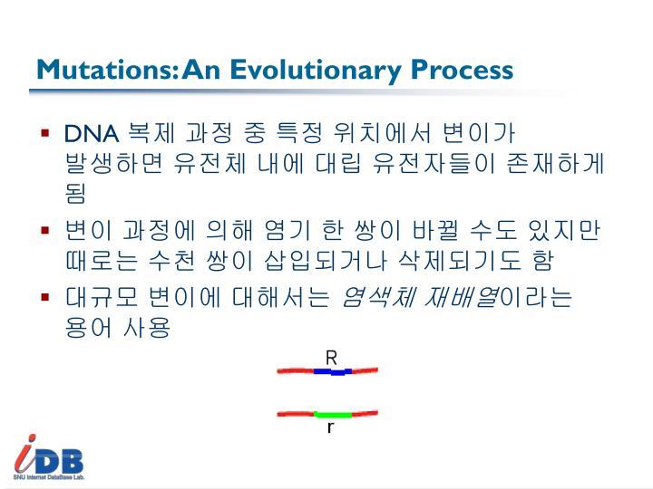 Mutations: An Evolutionary Process