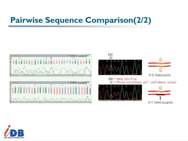 Pairwise Sequence Comparison(2/2)
