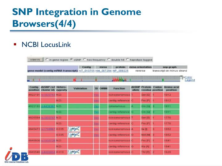 SNP Integration in Genome Browsers(4/4)