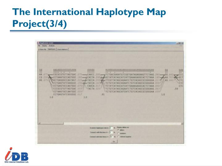 The International Haplotype Map Project(3/4)